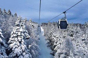 Arkadaşlarınla kayağa gideceksin nereye giderdin?